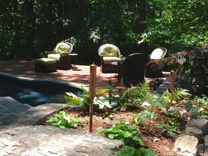 A backyard woodland garden oasis, with a seating area next to a pond.  A great place to relax amongst one of our greatest gifts- nature!