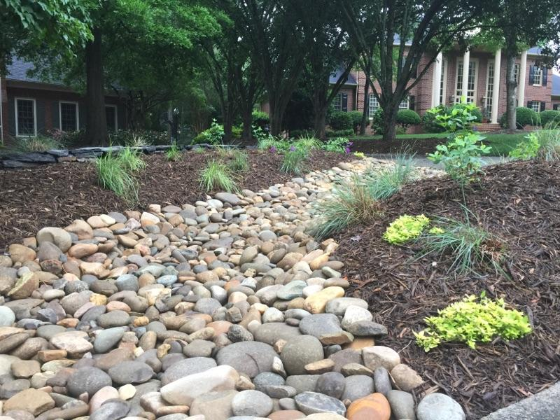 Landscape Drainage Solutions Stanfield NC | Wilson's Natural Landscaping - IMG950959