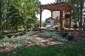 Whether it be a bench, a pergola, or just a small deck space; adding a place to sit and enjoy your woodland garden is a great feature to incorporate in to your space.  Imagine coming home after a long day in the office and being able to retreat and relax outdoors in this quiet, peaceful setting.